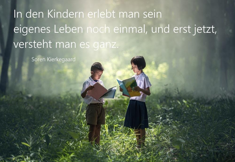 lesende Kinder im Wald