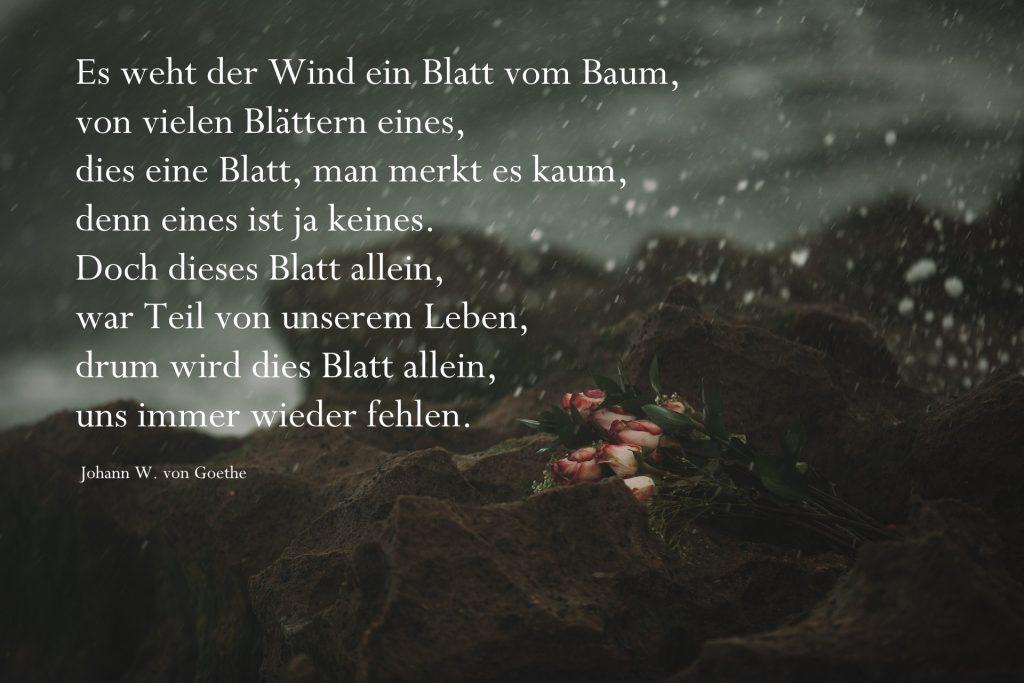 Gedanken J.W. Goethe